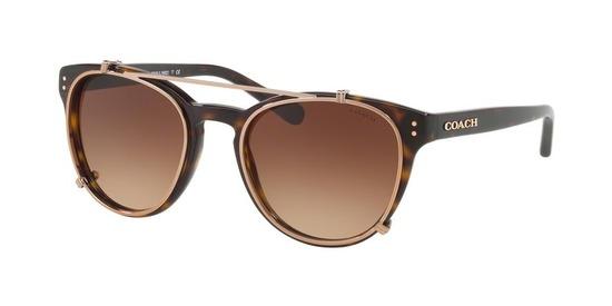 Coach HC8216 L1652 sunglasses