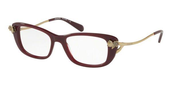 Coach HC6118B eyeglasses