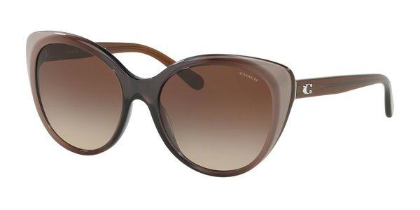 Coach HC8260 L1060 sunglasses