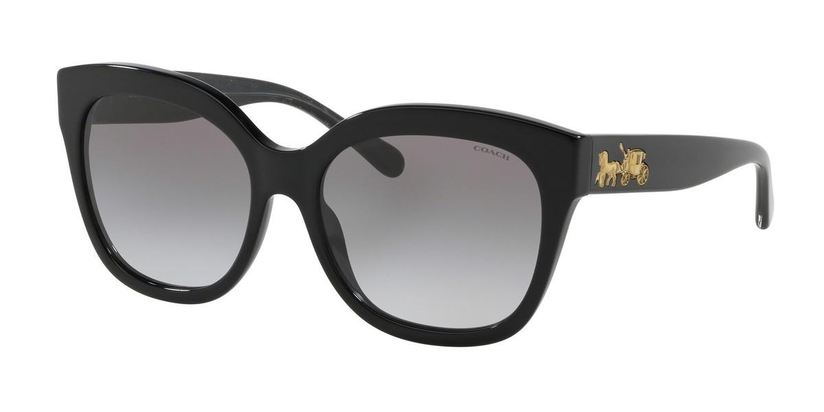 Coach HC8264F L1077 sunglasses
